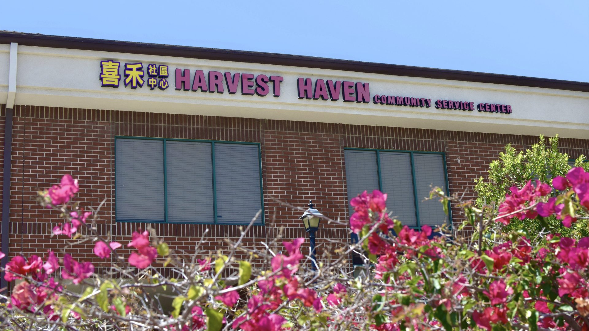 Harvest Haven